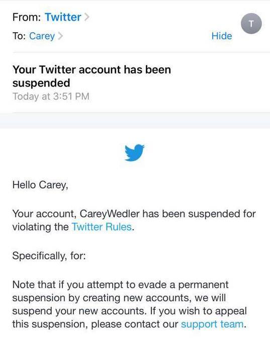 Email from Twitter posted online by Carey Wedler